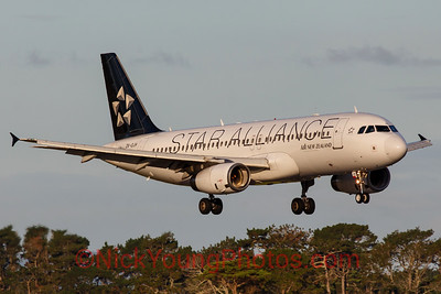 Air New Zealand Airbus A320 Star Alliance logojet