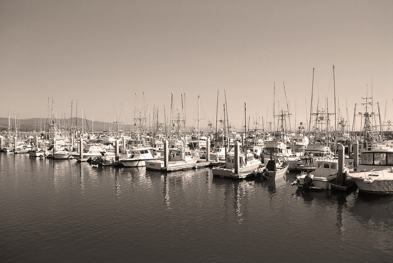 Pillar Point Marina, Half Moon Bay, CA