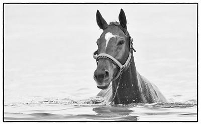 Loving the swim