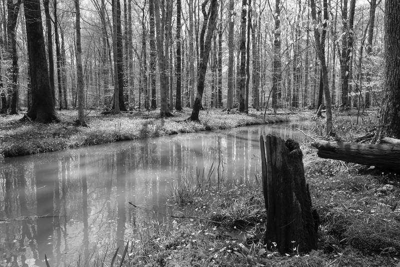 Northeast Creek basin<br /> best print size - all