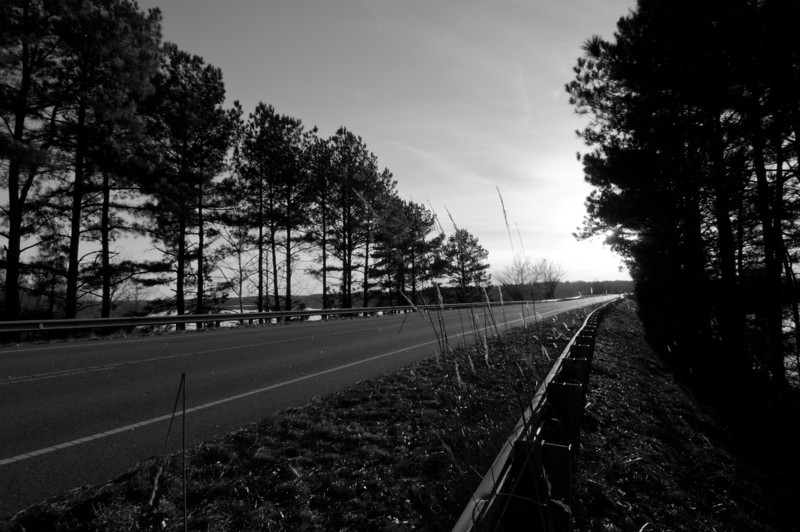 This is taken on the side of Cheek Rd. in Durham, looking south across Falls Lake.<br /> best print size - 8x12 or 12x18