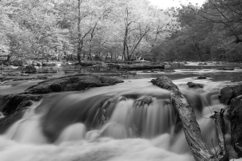 Eno River - Few's Ford Access<br /> best print size - 8x12 or 12x18