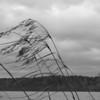 Storm's Warning - Jordan Lake.<br /> best print size - 8x12 or 12x18