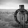 Texas Fence Post