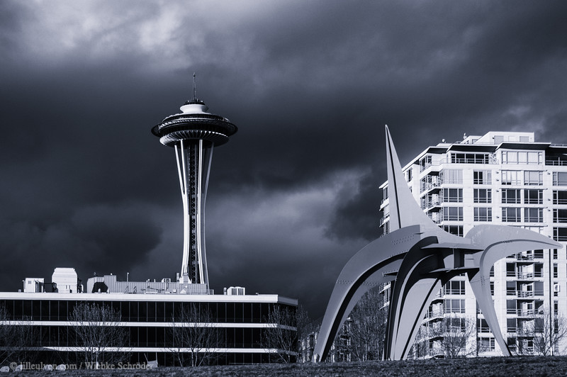 Olympic Sculpture Park Seattle with the Sky Tower in the background
