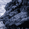 Pancake Rocks - dinosaur head