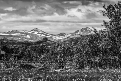 Venabufjellet - Mountains of Venabu