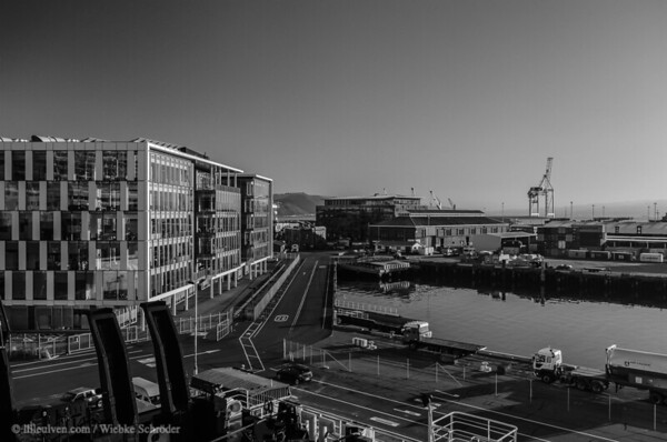 Wellington Harbor (Black & White)