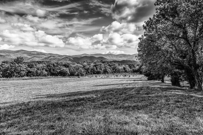 Fields of Cades Cove