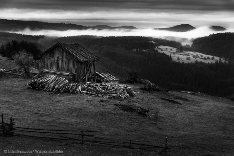 Early morning hours in the Rhodope mountains.