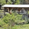 GSP_Blairsville2011--81