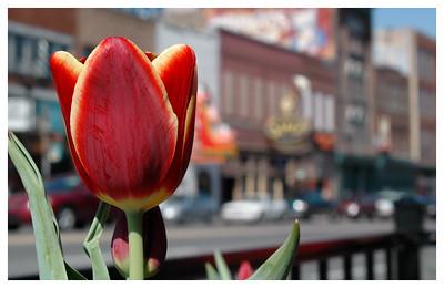 Downtown Nashville 2006.