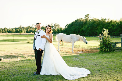 Brianna & Dylan0389