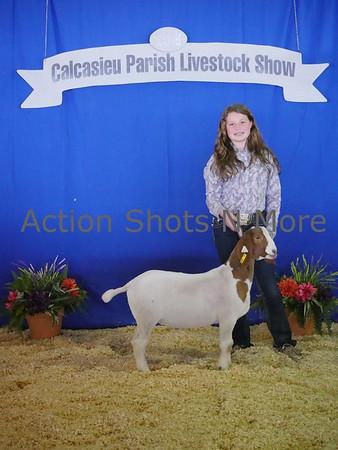 Calcasieu 4H Livestock Show, Goats, Thursday, 1/18/18