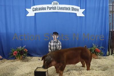 Calcasieu 4H Livestock Show,  Hogs & Rabbits, Saturday, 1/20/18
