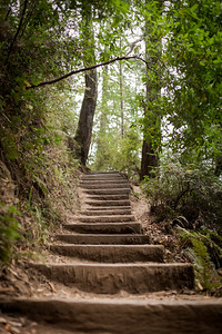 Stairs To Fairyland