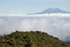 Teide from Alto de Garajonay, La Gomera, Canary Islands
