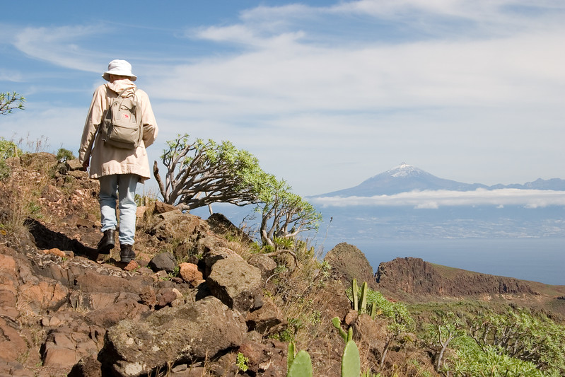 Los Picachos, La Gomera, Canary Islands