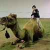 Casey Wright on a Camel at Virtue studio Ranch