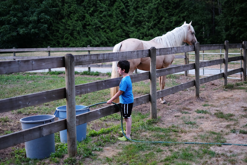 Casey watering the horses on the Virtue Ranch