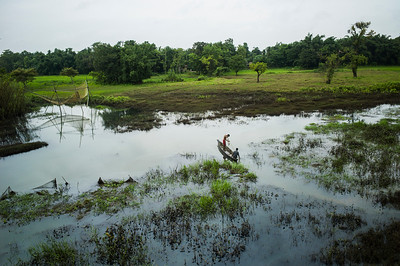 Dhemanji, Assam, India August,2014:   Men fish in the flooded fields near Dhemanji town.   Series on early marriages in Assam, India for Al Jazeera America.       Photo:  Sami Siva