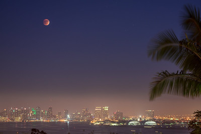 Blood Moon Over Downtown San Diego