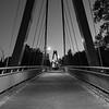 Peter Defazio Bridge, Eugene, OR.