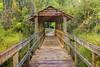 Clayton County_Wetland Center_9826