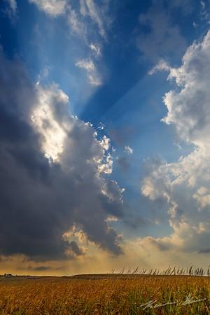 Crepuscular rays radiate from a broken cumulus cloud