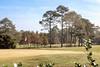 Coffee_Golf Course_0064