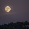 Moon over Corwina Park
