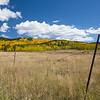 Broken Fence - unknown park, Colorado<br /> best print size - all