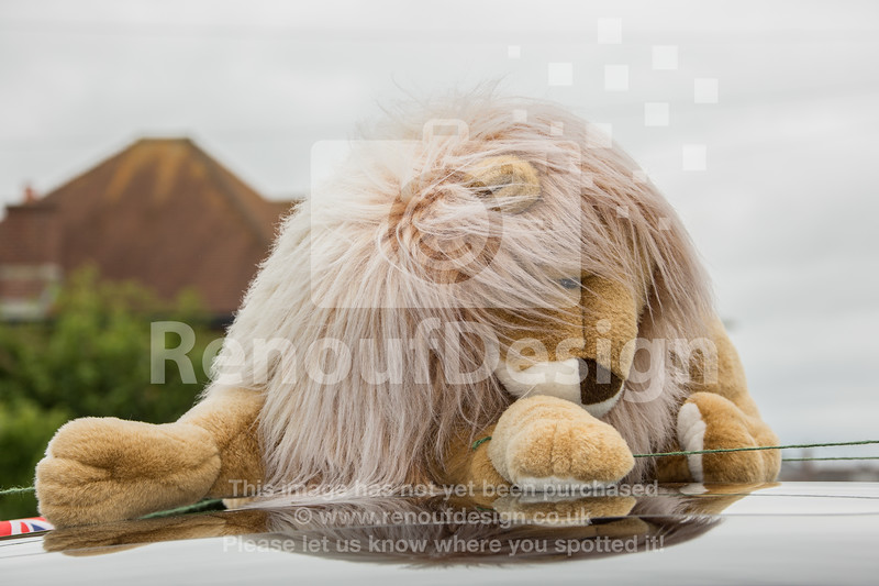 Lymington Carnival 2017 - www.renoufdesign.co.uk - 014