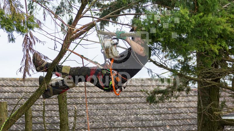 025 - R Purdie Tree and Garden Services