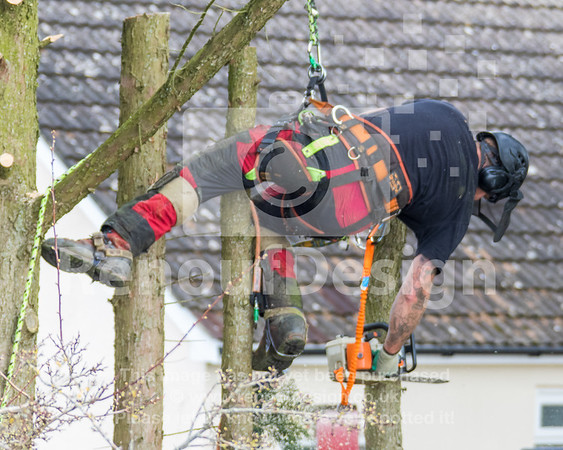 021 - R Purdie Tree and Garden Services