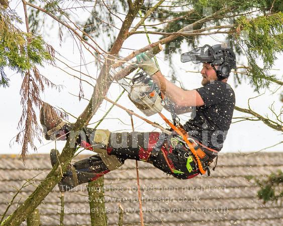 022 - R Purdie Tree and Garden Services