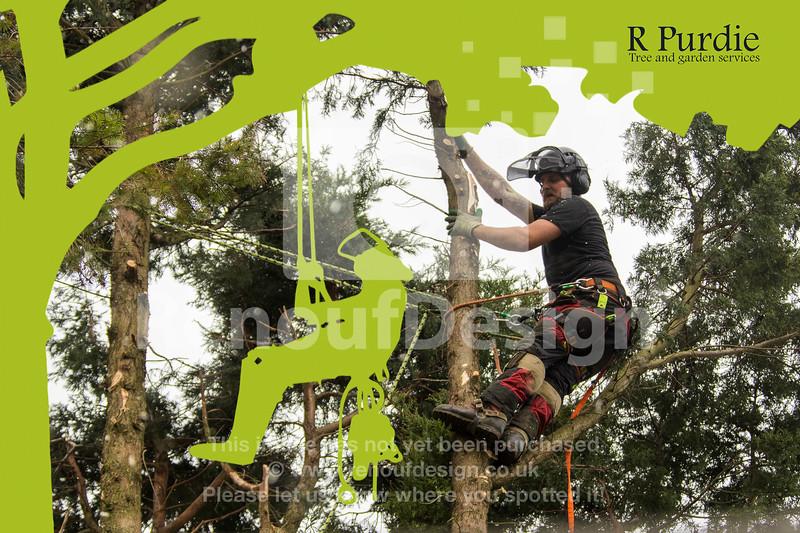 002 - R Purdie Tree and Garden Services