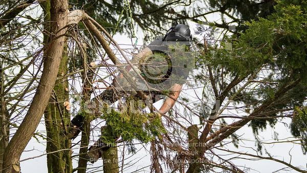 018 - R Purdie Tree and Garden Services
