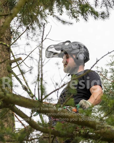 007 - R Purdie Tree and Garden Services