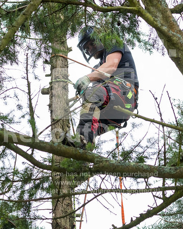 020 - R Purdie Tree and Garden Services