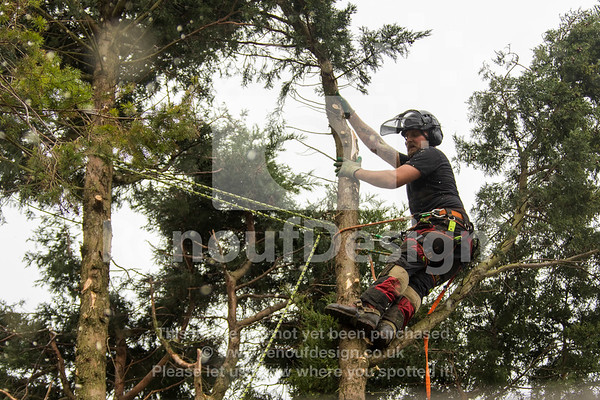 008 - R Purdie Tree and Garden Services