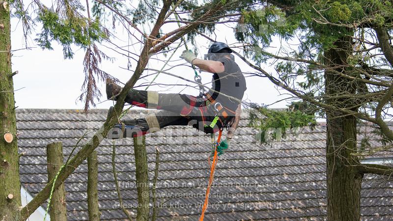 014 - R Purdie Tree and Garden Services