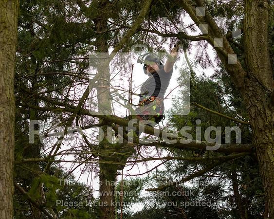 015 - R Purdie Tree and Garden Services