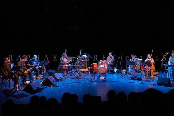 Nicole Mitchell and Black Earth ensemble, Sons d'Hiver Festival 2019 Nicoll Mitchell – flute ; Avery R Young – vocal ;  Kojiro Umezaki - shakuhachi ;  Mazz Swift - violin ; Tomeka Reid ;  cello, banjo ; Alex Wing – electric guitar oud ;  Tatsu Aoki – double bass, shamisen, taiko ; Helene Breschand – harp ; Jovia Armstrong - drums