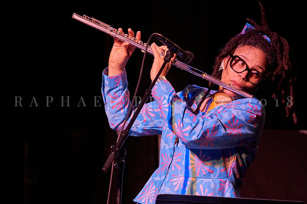 Nicole Mitchell and Black Earth ensemble, Sons d'Hiver Festival 2019 Nicole Mitchell on flute