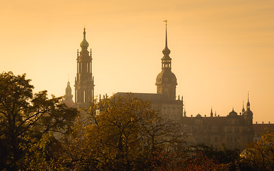 Golden glow / Dresden, Germany