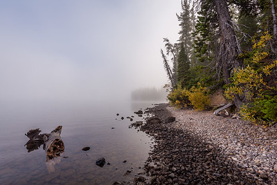 Morning fog / Yellowstone, USA