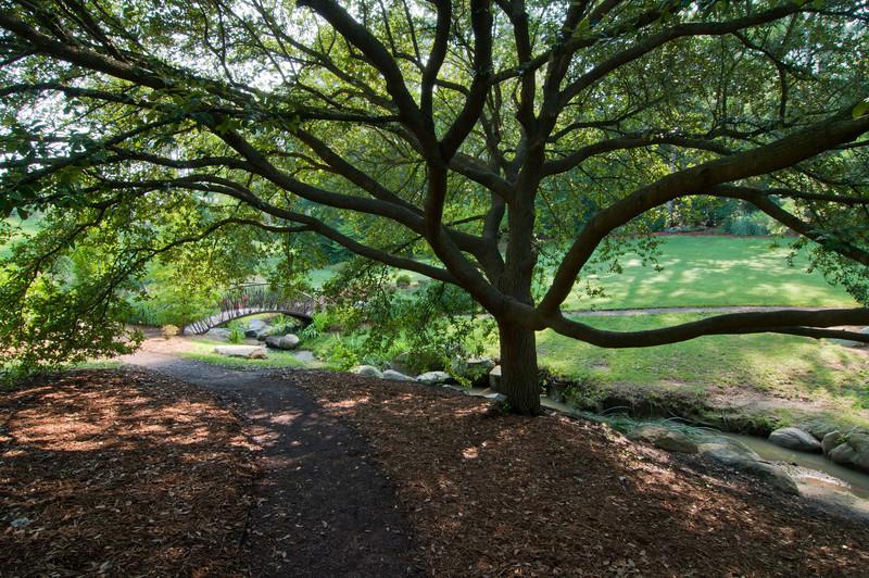 Duke Gardens<br /> best print size - 8x12 or 12x18