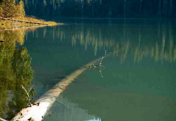 Cooper Lake #3
