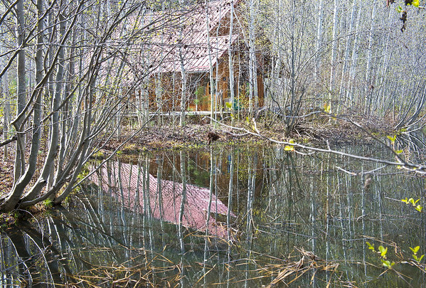 Spring pond with cabin